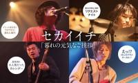 picka2_sekaiichi_head