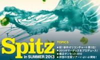 picka13_spitz_header